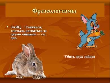 Фразеологизмы ЗАЯЦ. ~ Гоняться, гнаться, погнаться за двумя зайцами— см. два...