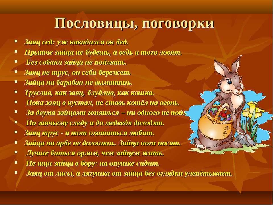 Пословицы, поговорки Заяц сед: уж навидался он бед. Прытче зайца не будешь, а...