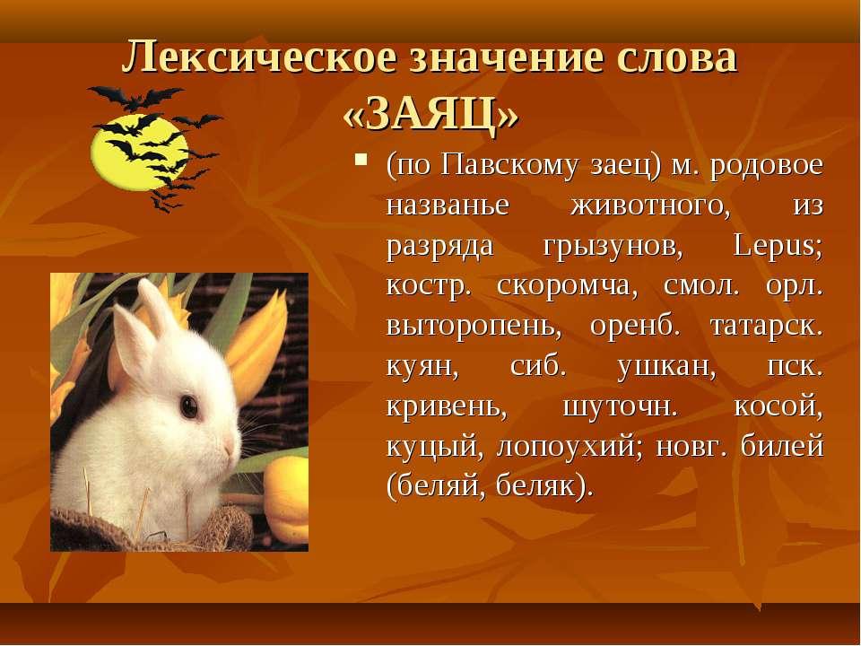 Лексическое значение слова «ЗАЯЦ» (по Павскому заец) м. родовое названье живо...