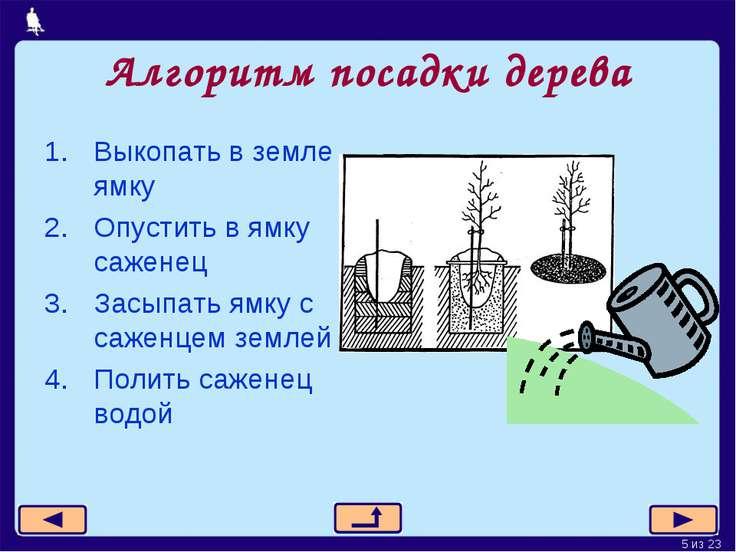 Алгоритм посадки дерева Выкопать в земле ямку Опустить в ямку саженец Засыпат...