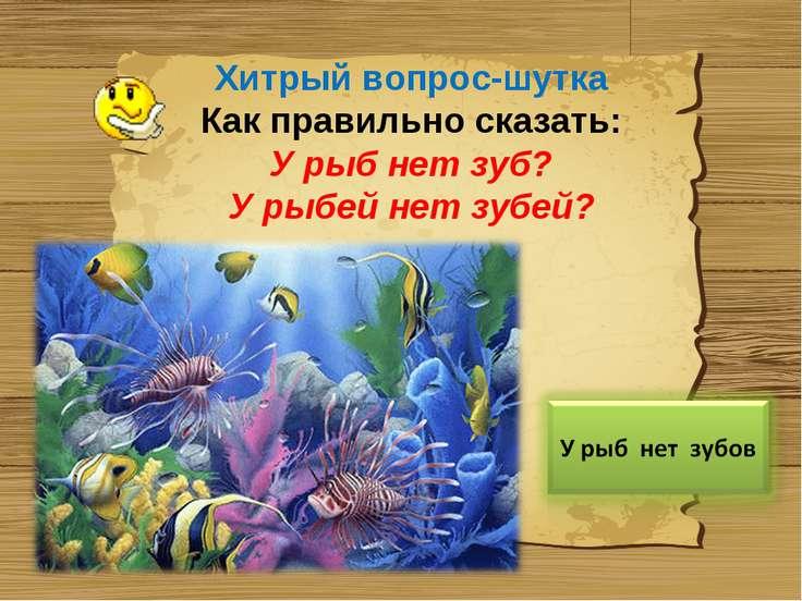 Хитрый вопрос-шутка Как правильно сказать: У рыб нет зуб? У рыбей нет зубей?