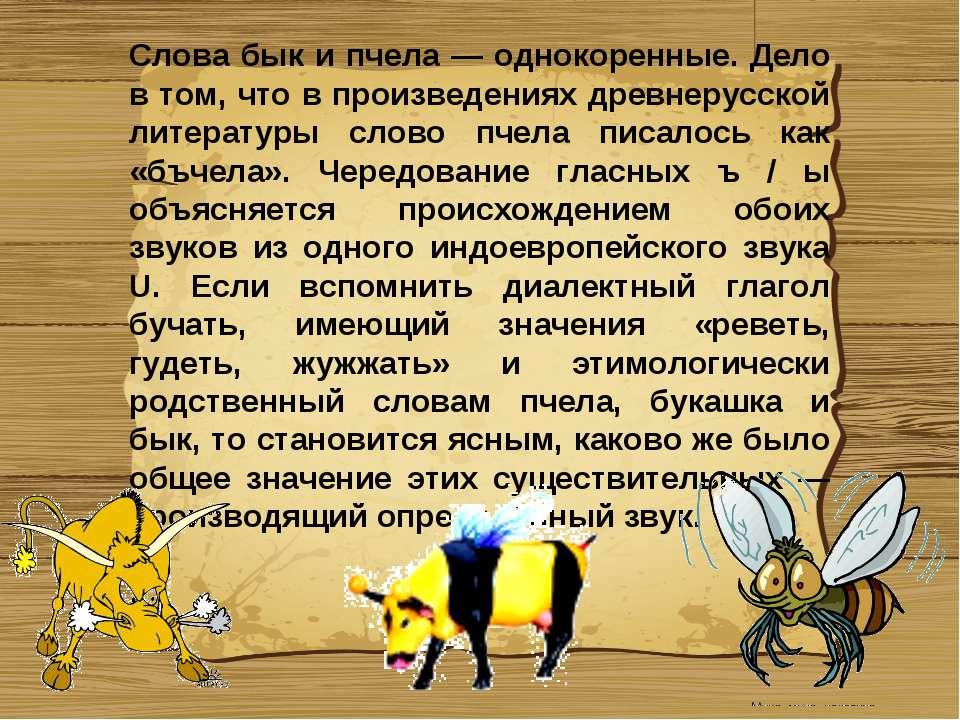 Слова бык и пчела — однокоренные. Дело в том, что в произведениях древнерусск...