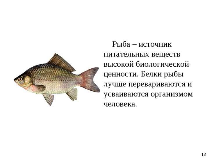 Рыба – источник питательных веществ высокой биологической ценности. Белки рыб...