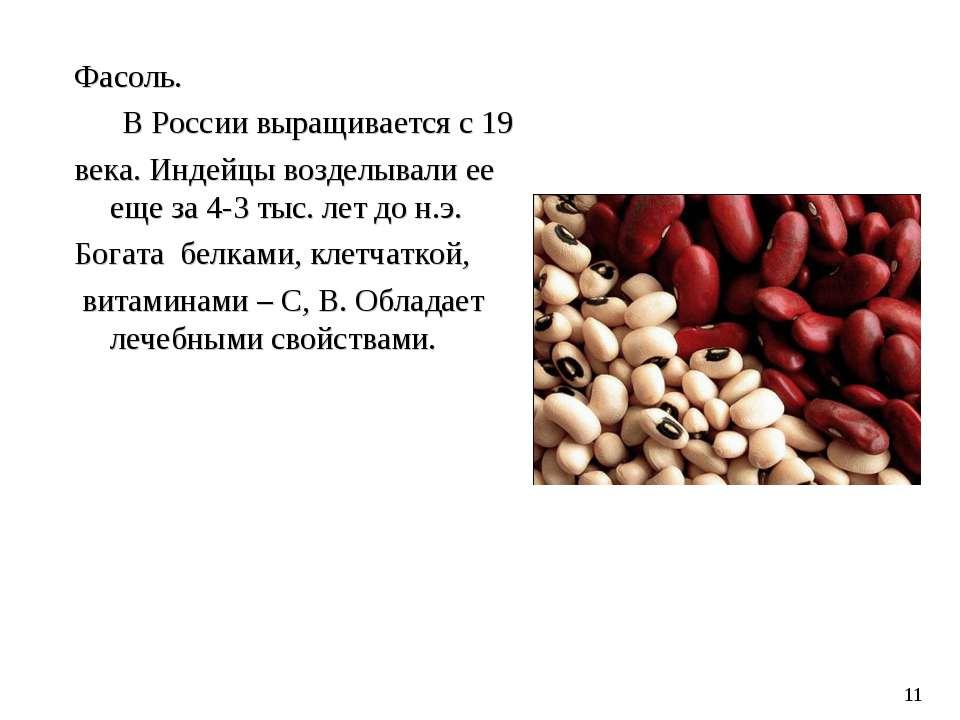Фасоль. В России выращивается с 19 века. Индейцы возделывали ее еще за 4-3 ты...