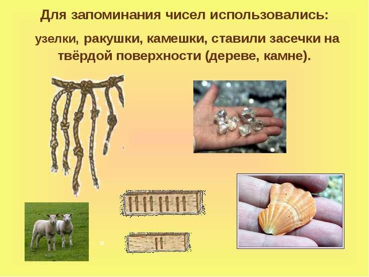Для запоминания чисел использовались: узелки, ракушки, камешки, ставили засеч...