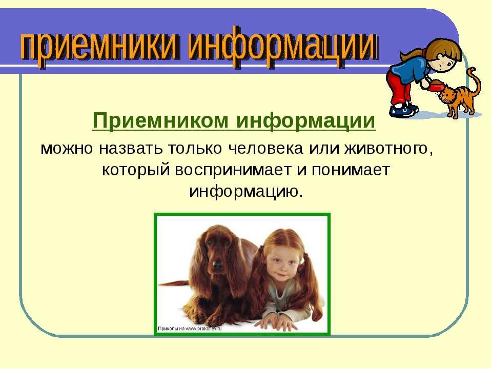 Приемником информации можно назвать только человека или животного, который во...