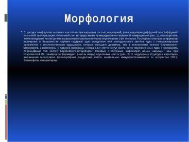Морфология Структура лимфоузлов частично или полностью нарушена за счет нодул...
