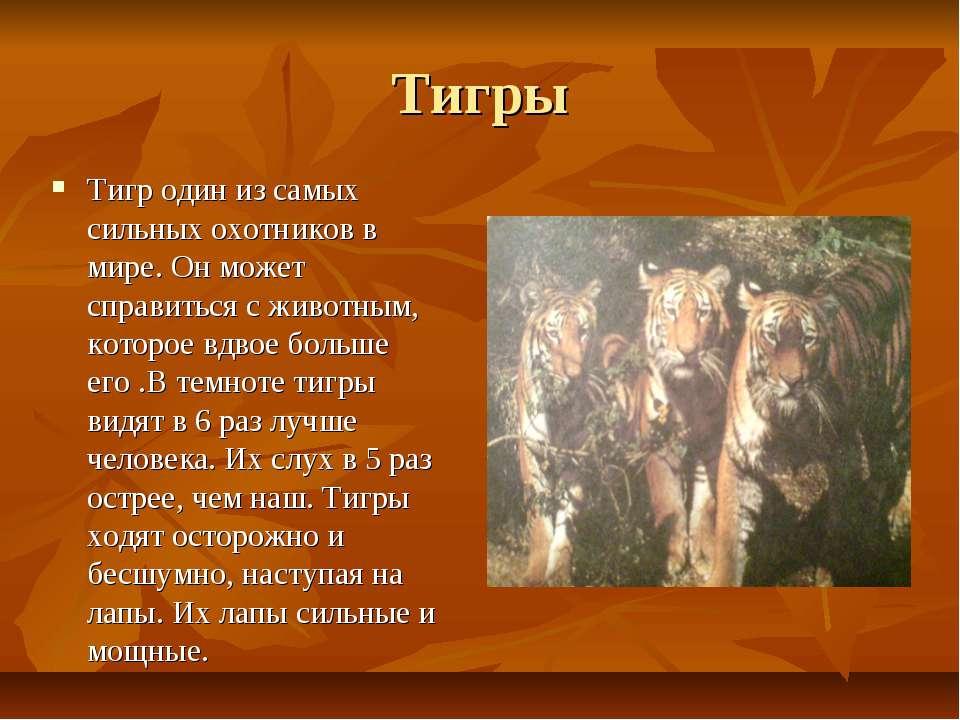 Тигры Тигр один из самых сильных охотников в мире. Он может справиться с живо...