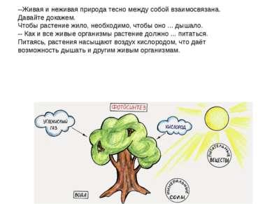 --Живая и неживая природа тесно между собой взаимосвязана. Давайте докажем. Ч...