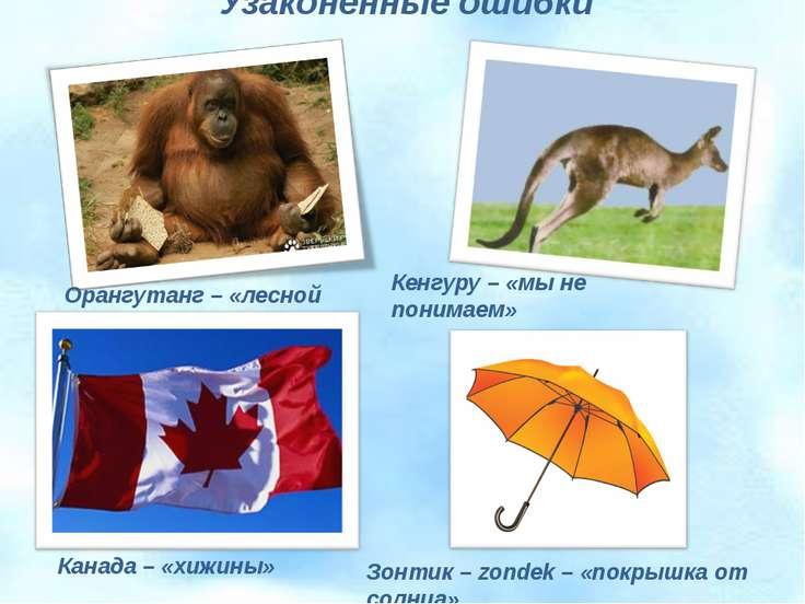 Узаконенные ошибки Орангутанг – «лесной человек» Кенгуру – «мы не понимаем» К...