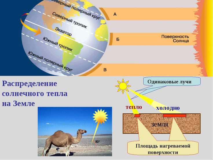 Распределение солнечного тепла на Земле земля тепло холодно