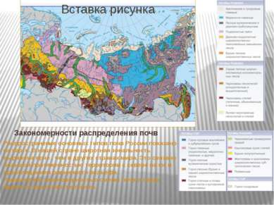 Закономерности распределения почв Распространение основных типов почв России ...