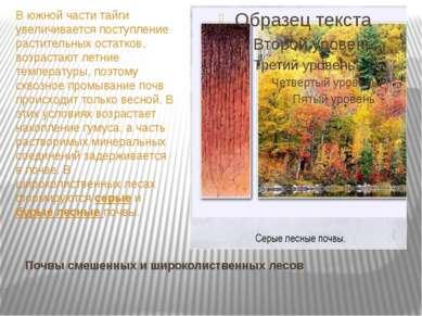 Почвы смешенных и широколиственных лесов В южной части тайги увеличивается по...