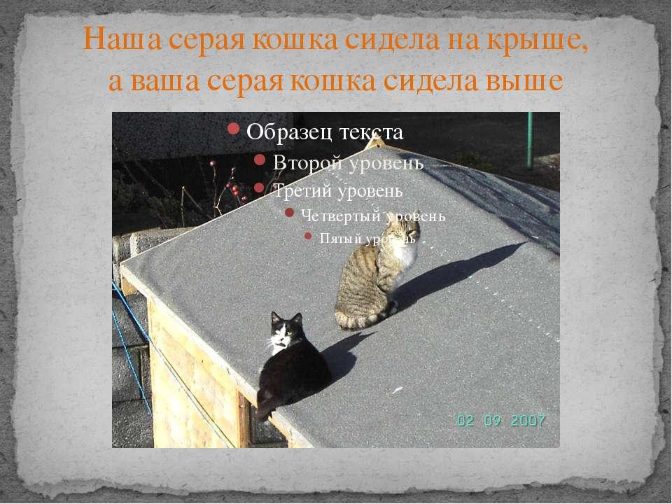 Наша серая кошка сидела на крыше, а ваша серая кошка сидела выше