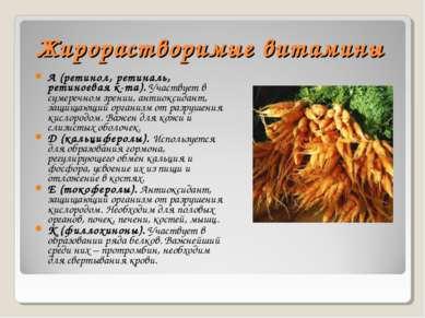 Жирорастворимые витамины А (ретинол, ретиналь, ретиноевая к-та). Участвует в ...