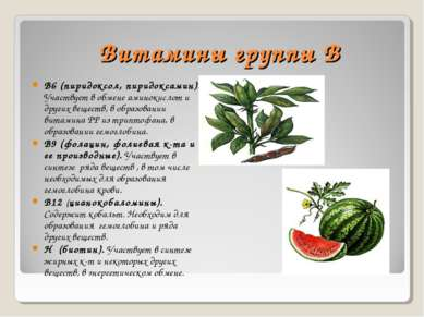 Витамины группы В В6 (пиридоксол, пиридоксамин). Участвует в обмене аминокисл...