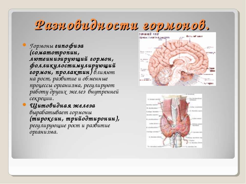 Разновидности гормонов. Гормоны гипофиза (соматотропин, лютеинизирующий гормо...