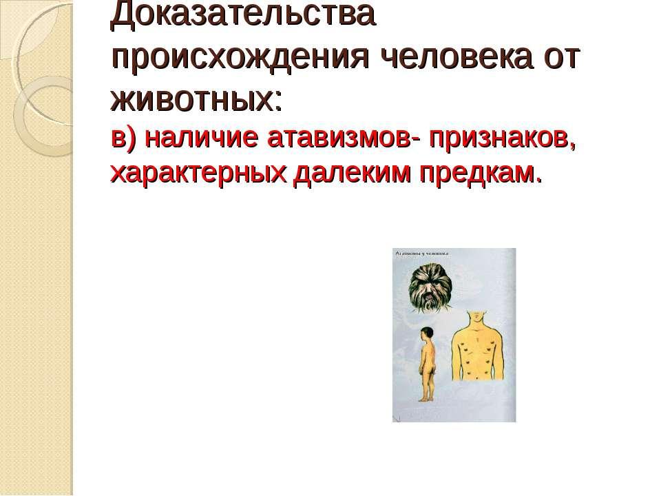 Доказательства происхождения человека от животных: в) наличие атавизмов- приз...