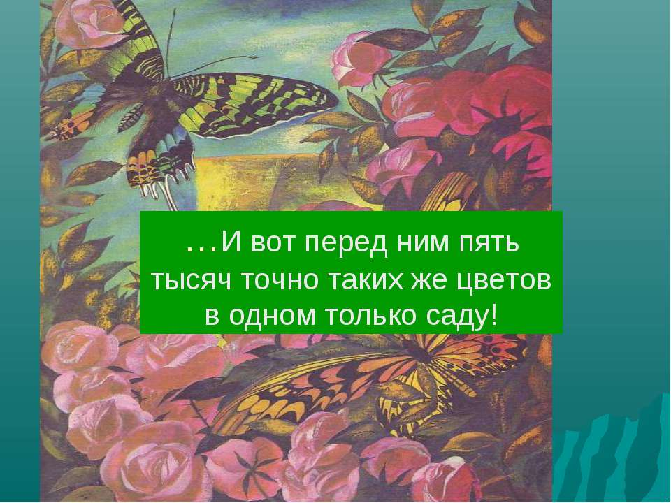 …И вот перед ним пять тысяч точно таких же цветов в одном только саду!