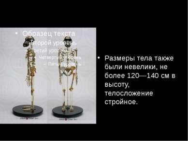 Размеры тела также были невелики, не более 120—140см в высоту, телосложение ...