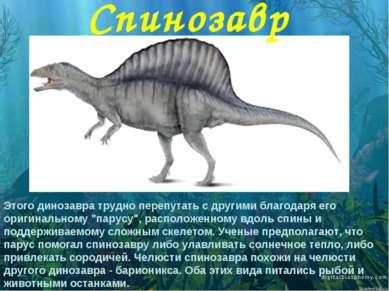 """Этого динозавра трудно перепутать с другими благодаря его оригинальному """"пару..."""