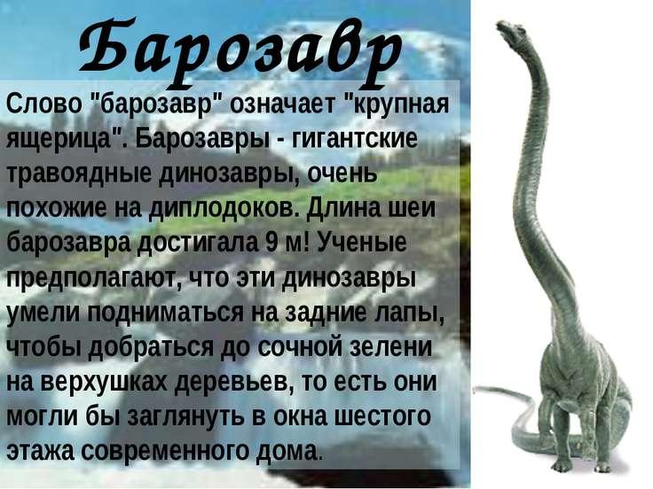 """Cлово """"барозавр"""" означает """"крупная ящерица"""". Барозавры - гигантские травоядны..."""