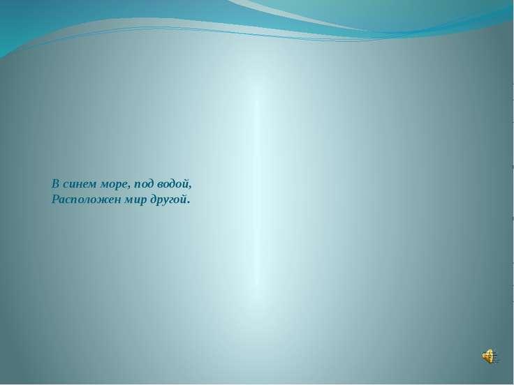 В синем море, под водой, Расположен мир другой.