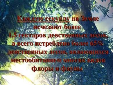 Каждую секунду на Земле исчезают более 1,5 гектаров девственных лесов, а всег...