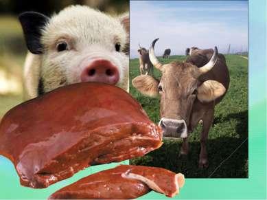 Мясо и рыба:Говядина, свинина-60; Конина-50; Кровь телячья-40; Кровь куриная...