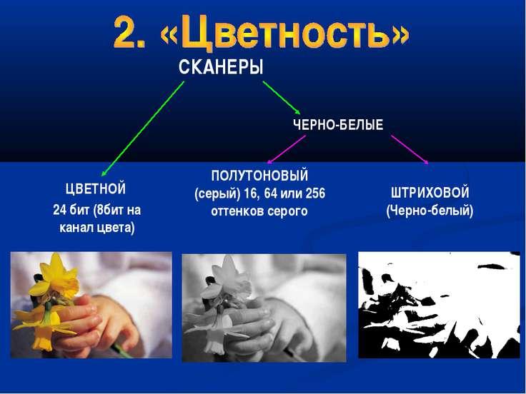 ЦВЕТНОЙ 24 бит (8бит на канал цвета) ПОЛУТОНОВЫЙ (серый) 16, 64 или 256 оттен...