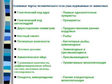 Основные черты человеческого тела унаследованные от животных n Генетический к...