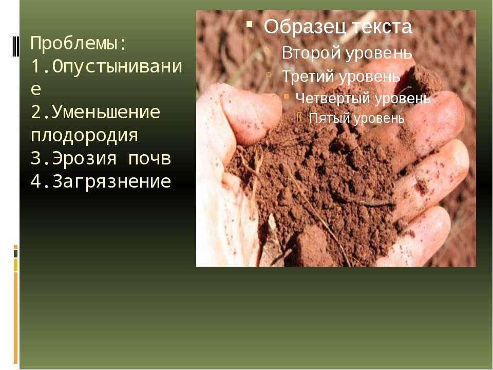 Проблемы: 1.Опустынивание 2.Уменьшение плодородия 3.Эрозия почв 4.Загрязнение