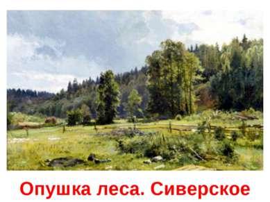 Опушка леса. Сиверское