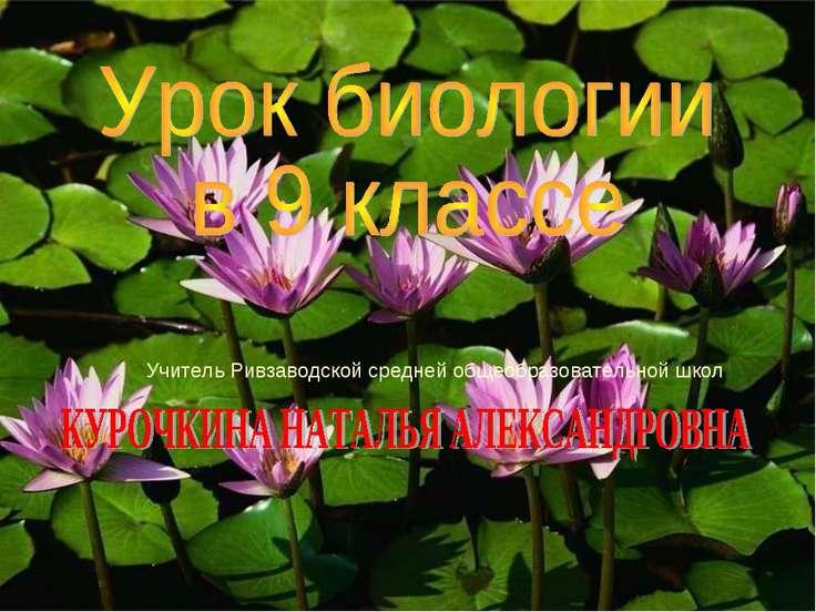 Учитель Ривзаводской средней общеобразовательной школ