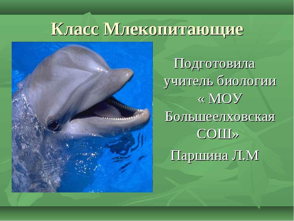 Класс Млекопитающие . Подготовила учитель биологии « МОУ Большеелховская СОШ»...