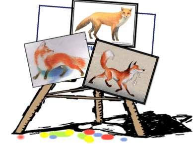 Каких оттенков шерсть лисы?