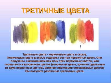 ТРЕТИЧНЫЕ ЦВЕТА Третичные цвета - коричневые цвета и серые. Коричневые цвета ...