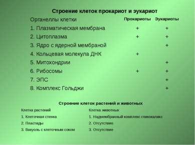 Строение клеток прокариот и эукариот Органеллы клетки Прокариоты Эукариоты 1....