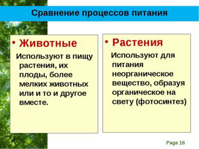 Сравнение процессов питания Животные Используют в пищу растения, их плоды, бо...