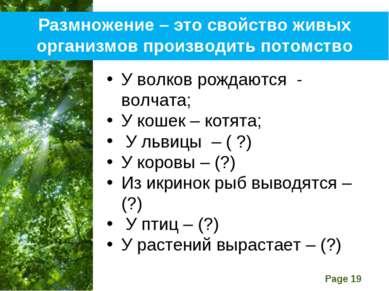 Размножение – это свойство живых организмов производить потомство У волков ро...