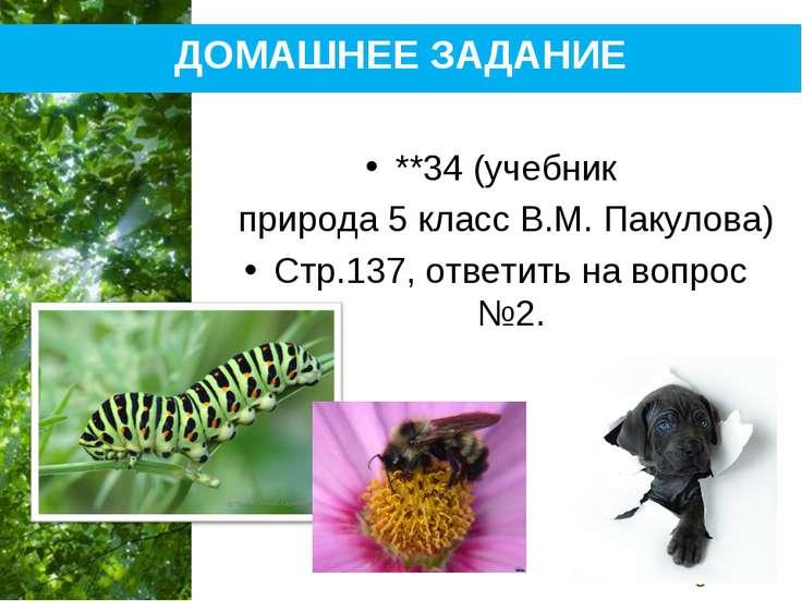 ДОМАШНЕЕ ЗАДАНИЕ **34 (учебник природа 5 класс В.М. Пакулова) Стр.137, ответи...