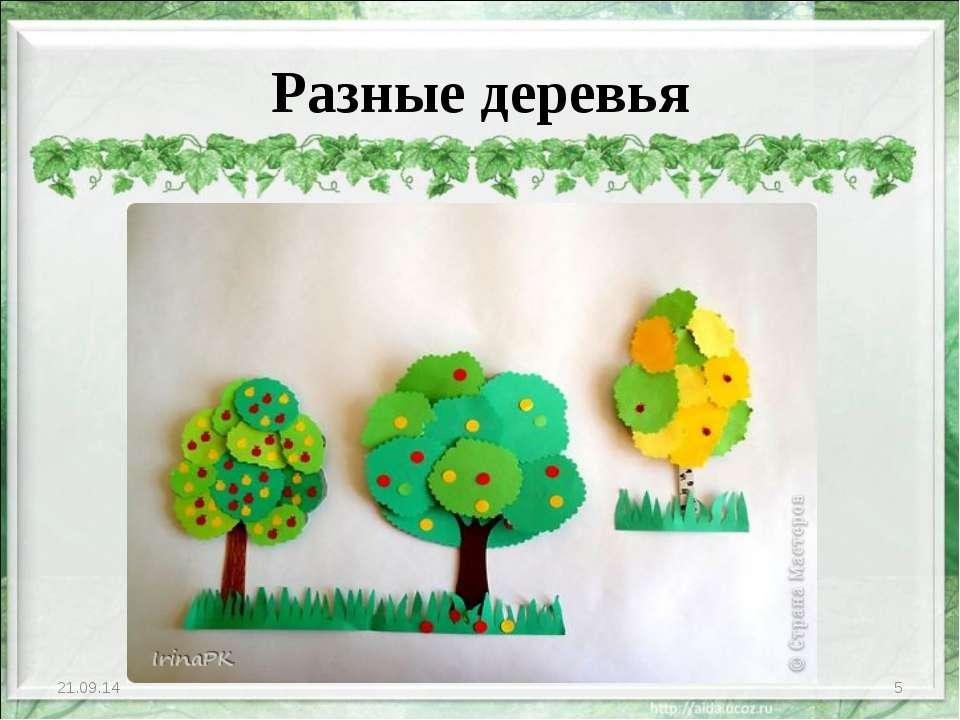 Разные деревья * *