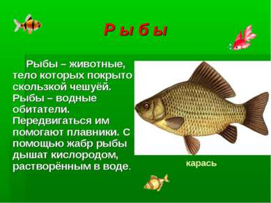 Р ы б ы Рыбы – животные, тело которых покрыто скользкой чешуёй. Рыбы – водные...