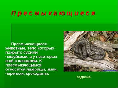 П р е с м ы к а ю щ и е с я Пресмыкающиеся – животные, тело которых покрыто с...