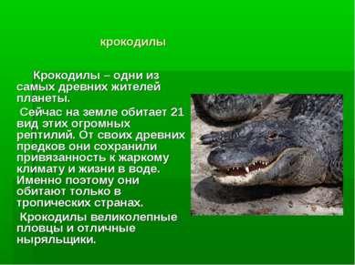 крокодилы Крокодилы – одни из самых древних жителей планеты. Сейчас на земле ...