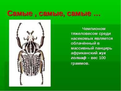 Самые , самые, самые … Чемпионом тяжеловесом среди насекомых является облачён...