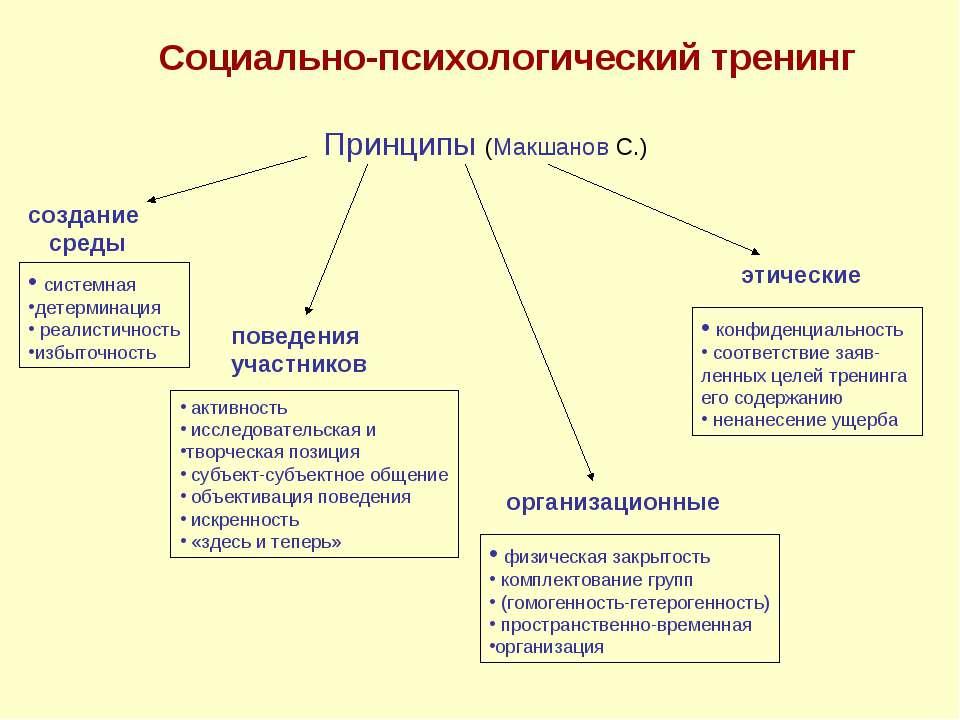 Принципы (Макшанов С.) создание среды поведения участников организационные эт...