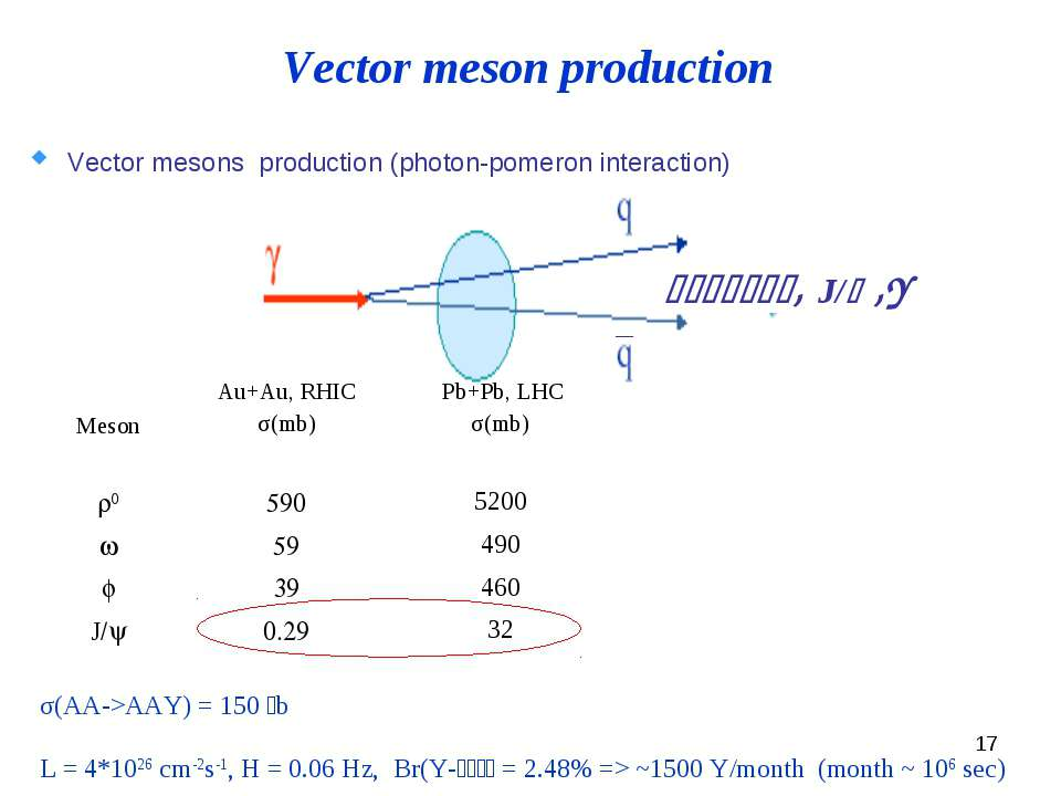 * Vector mesons production (photon-pomeron interaction) σ(AA->AAY) = 150 mb L...