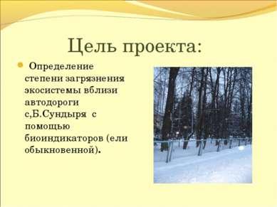 Цель проекта: Определение степени загрязнения экосистемы вблизи автодороги с,...