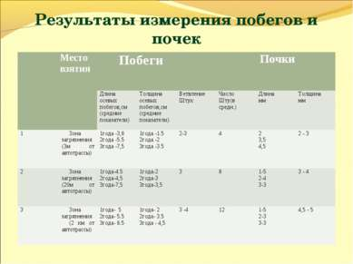 Результаты измерения побегов и почек Место взятия Побеги Почки Длина осевых п...